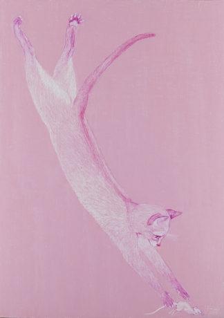 Tiina-Liisa Kaalamo | Kissaa ja hiirtä