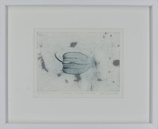 Eeva Kirilin-Helenius | Varjoja kivipuutarhasta