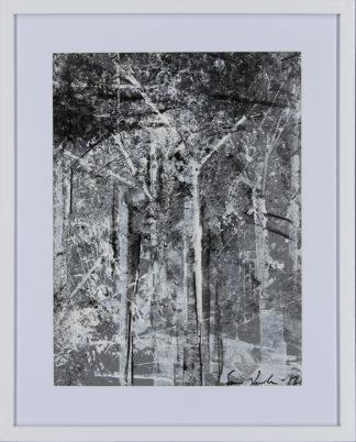 Sami Leutola | Puisto