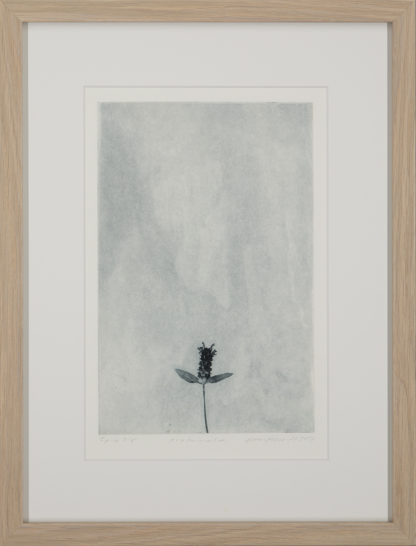 Eeva Kirilin-Helenius | Arohumala (2/5)