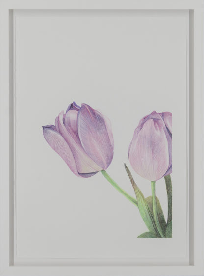 Eeva Kaisa Jauhiainen | Ostin itselleni kukkia I