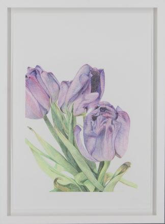 Eeva Kaisa Jauhiainen | Ostin itselleni kukkia II