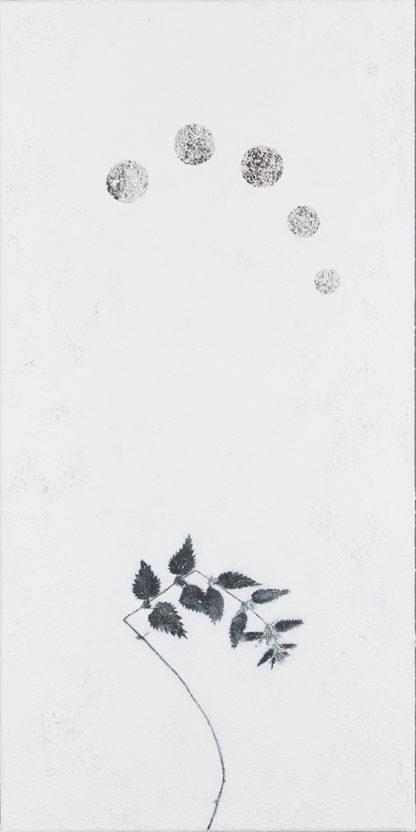 Eeva Kirilin-Helenius | Talvipuutarhasta