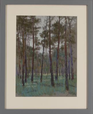 Sergei Pietilä | Metsä