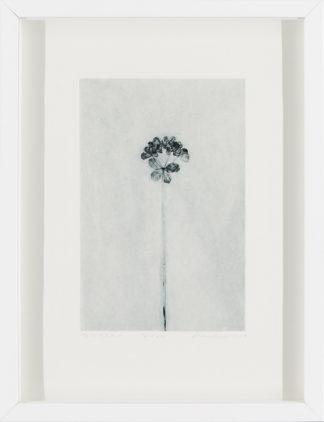 Eeva Kirilin-Helenius | Tyräkki