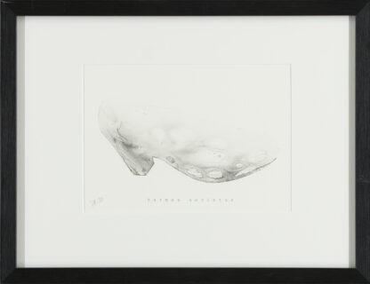Sirpa Pyykkö | Harmaa aavistus