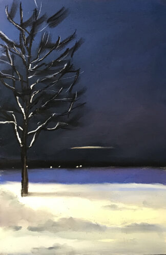 Timo Jakola | Valonkajo Messilästä